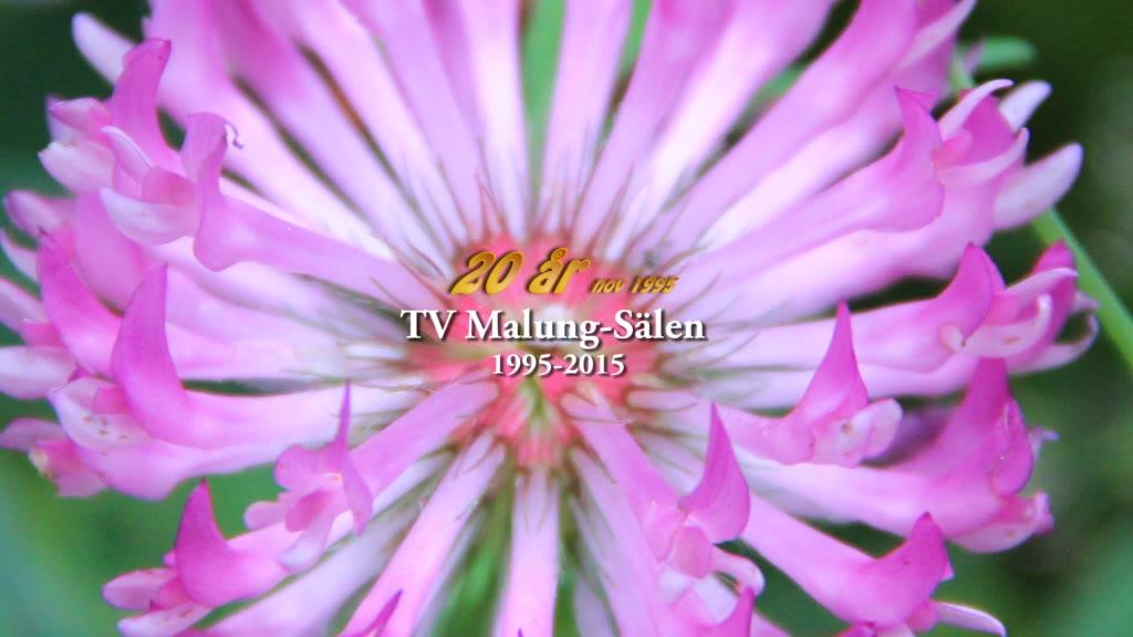 TV Malung-Sälen 20 år