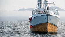 Arbetet bakom kulisserna och torsknapp