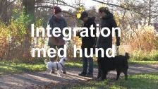 Integration med hund - textad version