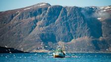 Båt- och skidåkning – en superkombo i norska Vestlandet