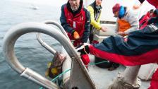 Slitsamt arbete på torskbankarna