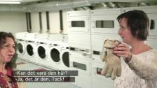 I tvättstugan