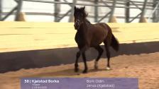 # 58 - Kjølstad Borka