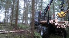 Malwa developed their own forestry machine